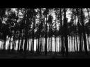 TRZY DNI PÓŹNIEJ - ESTER (WODA) z albumu Pokój jej cieniom