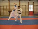 Karate SWEEPS and Takedowns, Ashi Barai