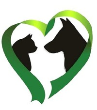 БФ помощи животным