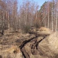 ВКонтакте Сёма Сёмочкин фотографии