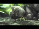 SYMBIOSIS a short film by Mitchell Counsell