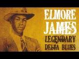 Elmore James - 40 Exciting Legendary Blues Tracks Tribute To Elmore James,