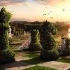 ШФЕ | Шахматный магазин | Купить шахматы