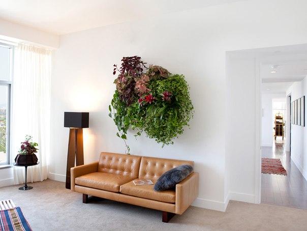Декор стены растениями