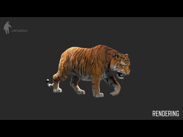 CGI VFX Breakdowns : Making of Tiger for Lilyhammer - by Panoptiqm