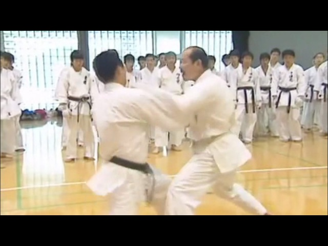 Sensei Nishimura Kumite Techniques 1