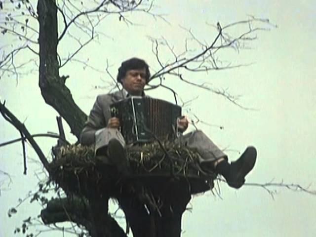 Николай Караченцов - Я ходил по белу свету...(Из к/ф Белые росы)