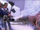 """""""Белый плен"""" съёмки с собаками"""