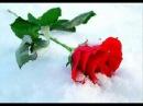 ...я тебя всегда буду ждать....
