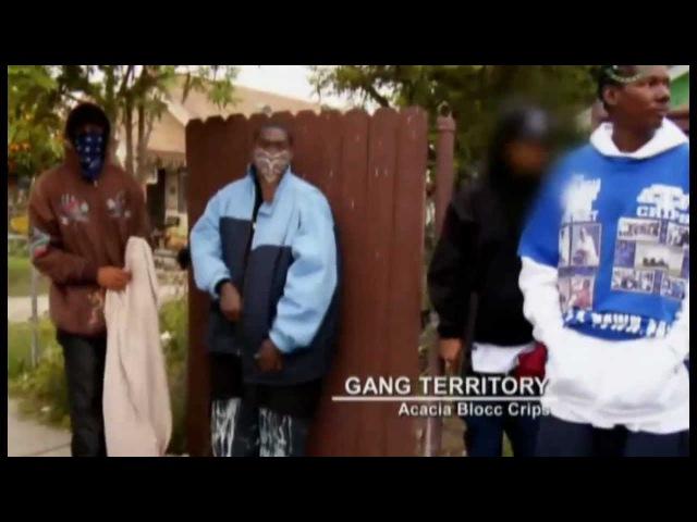 Оружие банды Крипс (Crips Guns)