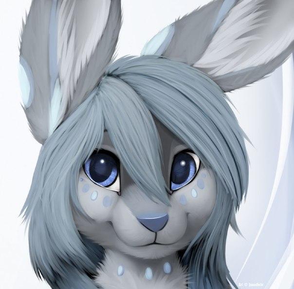 Furry заяц