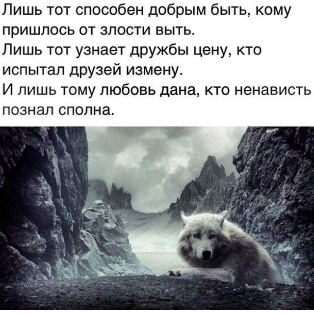 Сейран Мамадалиев |