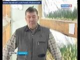 Домашние бизнес идеи Бизнес идеи для начинающих  Выращивание зеленого лука