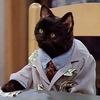Ветеринарная Клиника ZOOZOO