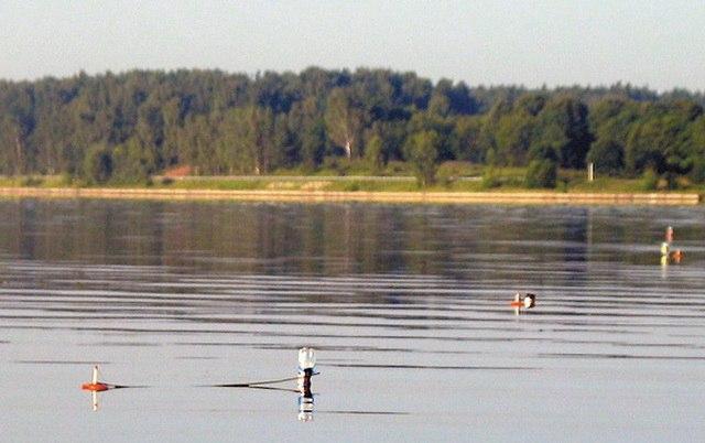 ловля на реке на кружки