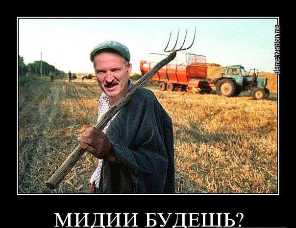 Турчинов: Вдоль границы с Украиной находятся 53 тысячи российских военных - Цензор.НЕТ 7128