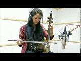 Iranian musical instrument