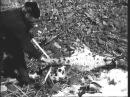 Ловля барса в Киргизии 1956 год