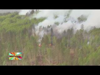 ✔ Площадь лесных пожаров в Сибири увеличилась за выходные в три раза