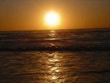 Рома В.П.Р.- Солнце и соль