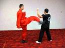 凶狠 五步拳 Wu Bu Quan Application