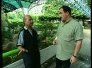 В поисках приключений Таиланд часть 2