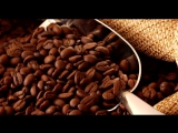 Кофейный скраб от целлюлита, самые простые и эффективные рецепты с молотым кофе и кофейной гущей. (2)