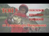 ТОП 5: поимок КРУПНЫХ ГОЛАВЛЕЙ с берега от Александра Волынкина