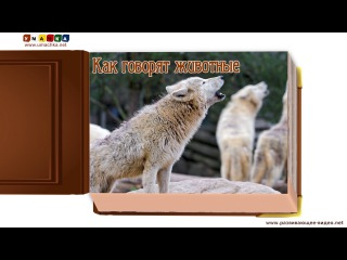 Как говорят животные (звуки животных) - развивающее видео для детей (2)