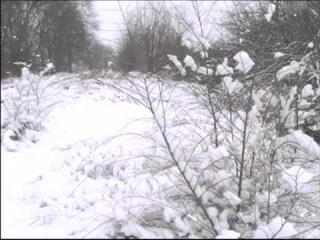 Зимний вальс ! Игорь Чернуха ! ( клип , музыка , вокал ) стихи Сергей Власов !