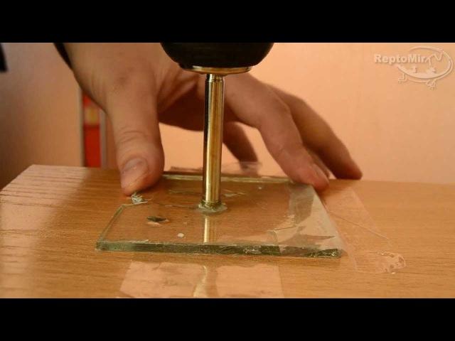 Как просверлить стекло Сверление стекла в домашних условиях Видео урок от ReptoMir TV