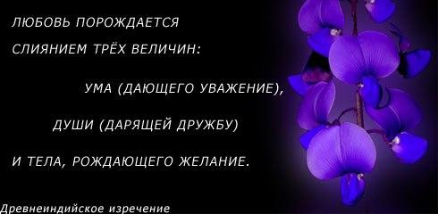 http://cs621916.vk.me/v621916333/38f85/dt_KFYHX_Ng.jpg