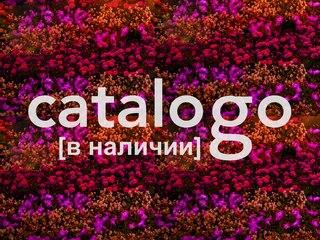 ПЛАТЬЯ КАЗИНО МОСКВА | ВКонтакте