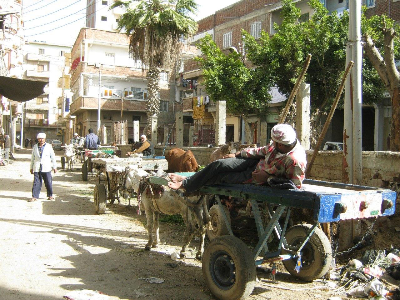 Грузовое такси в Египте