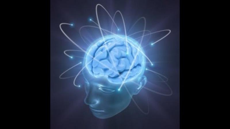 Секреты мозга, Ошибки психологов, Полушария мозга, С В Савельев