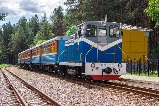 до какого возраста детский билет на поезд: