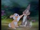 мультфильм зайцы про любовь (Бэмби)