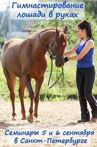 Семинар Гимнастирование лошади в руках