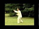 108 форм Тайцзицюань стиль Ян, Мастер Лю Гаомин