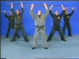 Ханбо-Дзюцу - палочный бой самураев