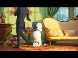 Тайная жизнь домашних животных (2016)  Тизер-трейлер~3