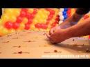 Панно из воздушных шаров  (  3  ) СВЯЗЫВАНИЕ ШАРОВ ,