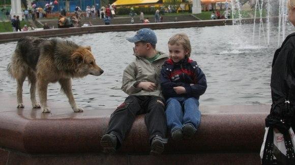 Акция Догхантеров 25.01.14 QefYPFOgqTo