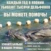Спасаем Дельфинов - Save Dolphins