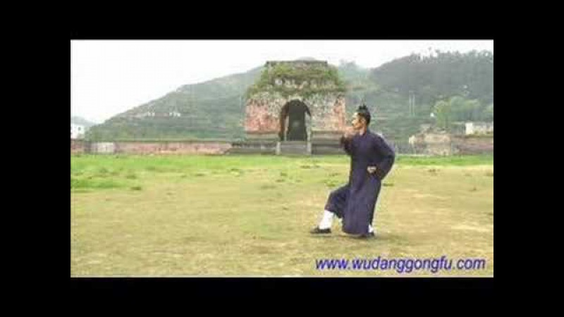 Wudang Taiji 13 (武当太极13势) - Master Yuan Xiu Gang (袁修刚)