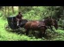 Пелагия и белый бульдог - 5 серия / 2009 / Сериал