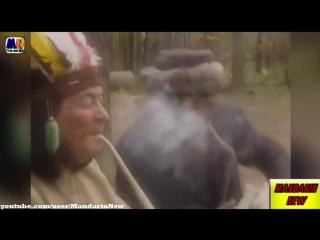 PRIKOLY_2015_podborka_prikolov_JAnvar_20
