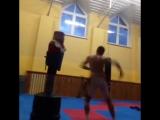 Весьма необычный гость ,)))taekwondo