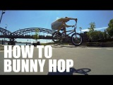 How to Bunny Hop on a BMX Bike - Как сделать Банни-хоп Дима Гордей Школа BMX Online