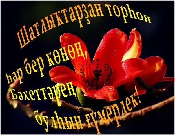 Башкирские открытки на день рождения